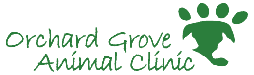 Orchard Grove Animal Clinic